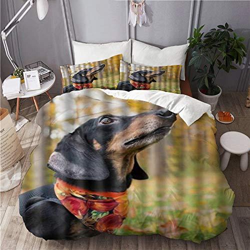 Minalo Bettwäsche-Set,Mikrofaser,Nette Liebe Baby Dackel Hund Thema Druck,1 Bettbezug 240x260 + 2 Kopfkissenbezug